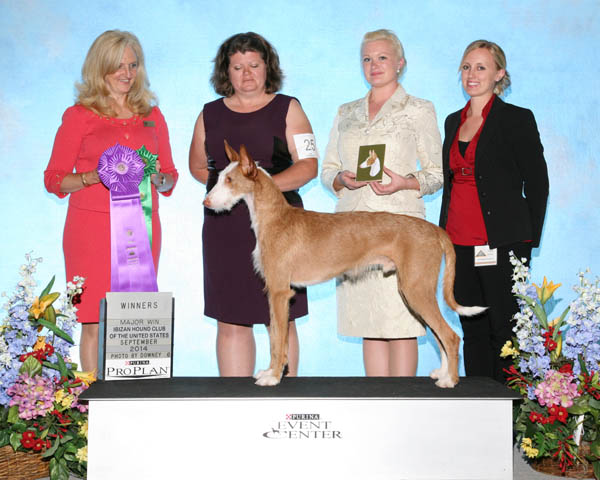 Winners Dog - Aliki Notanuff's Twice The Spice