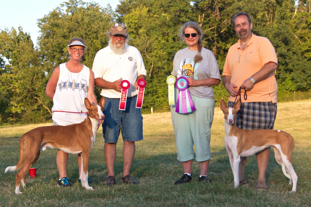 AKC Lure Coursing High Scoring Kennel Stake