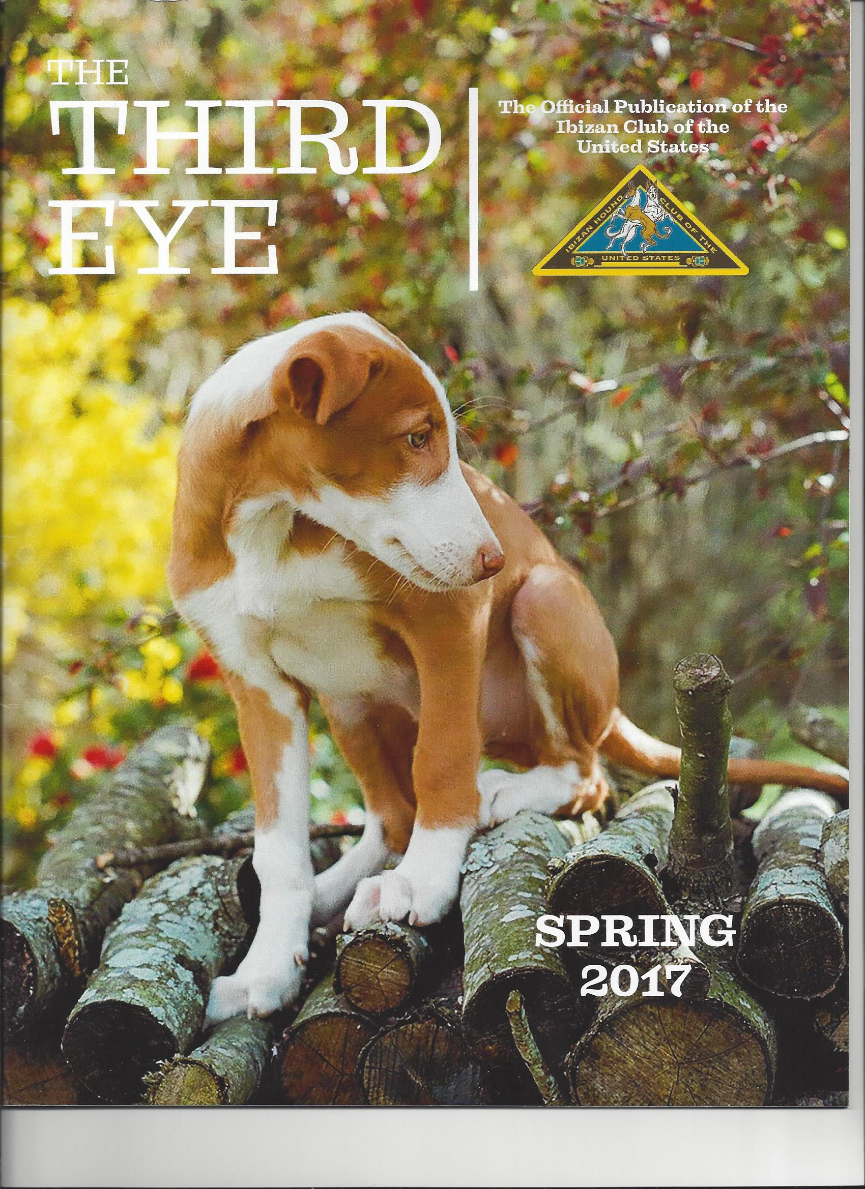 Click here to view 2017 Spring Issue PDF.