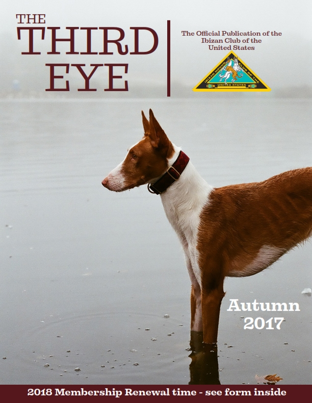 Click here to view 2017 Fall Issue PDF.