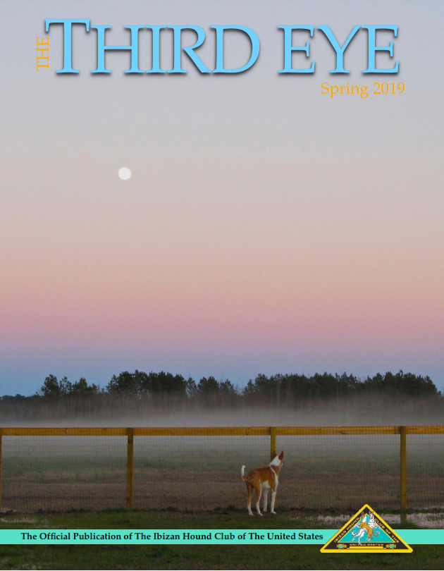 Click here to view 2019 Spring Issue PDF.